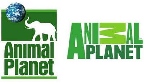 logotipo animal planet