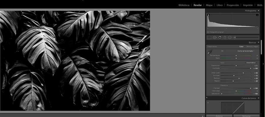 Cómo diseñar en 1 minuto imágenes profesionales 3